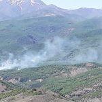 Baharın gelişi ile Dersim'de orman yangınları da başladı