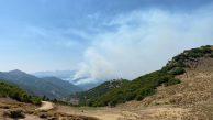 11 gündür Dersim'in ormanları yanıyor, Orman Bakanlığı izliyor