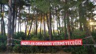 Jandarma, ormanı ve doğayı koruyan halka saldırdı; orman yok edilecek!
