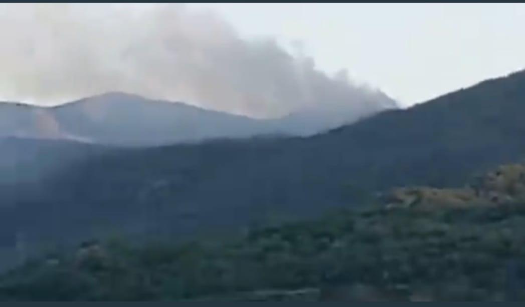 Dersim'in Ovacık İlçesi Yaylagünü kırsalında orman yangını başladı