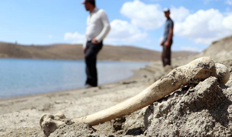 Baraj suyu çekilince ortaya insan kemikleri çıktı…
